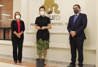 DONACIÓN DE UN ÁRBOL DE CEDRO DEL LÍBANO